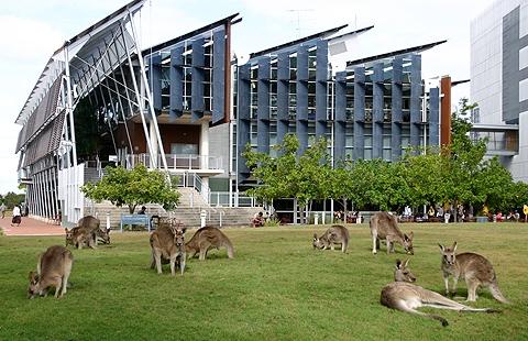 ... in Attending University on the Sunshine Coast? | Lexis | Noosa Blog